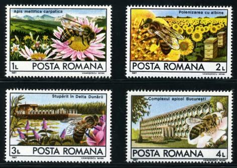 1967  Μελισσοκομία στην Ρουμανία α. Η τοπική φυλή μέλισσας (καρπαθική) β. Επικονίαση σε καλλιέργειες ηλιάνθων γ. Πλωτή σχεδία - μελισσοκομείο στο δέλτα του Δούναβη δ. Κτίριο μελισσοκομικού συνδέσμου στο Βουκουρέστι